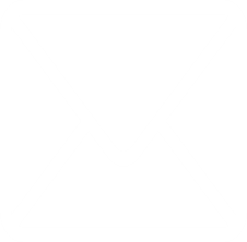 Dealer Branded Email Icon